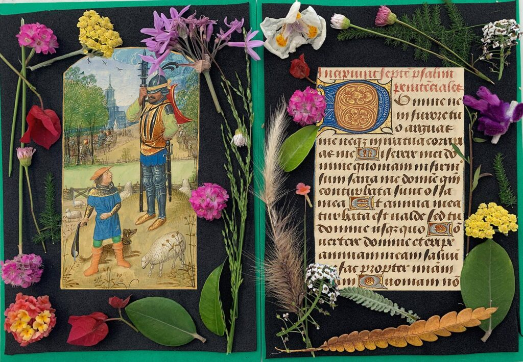 Manuscript images pasted on black background, decorated with flowers around the borders