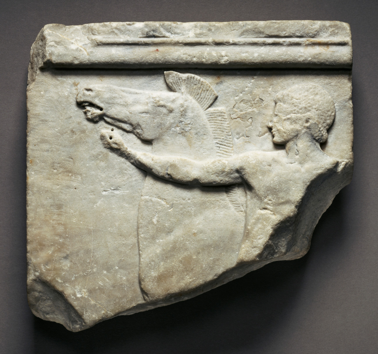 Marble fragment showing head and torso of person holding hand out to a horse's mouth