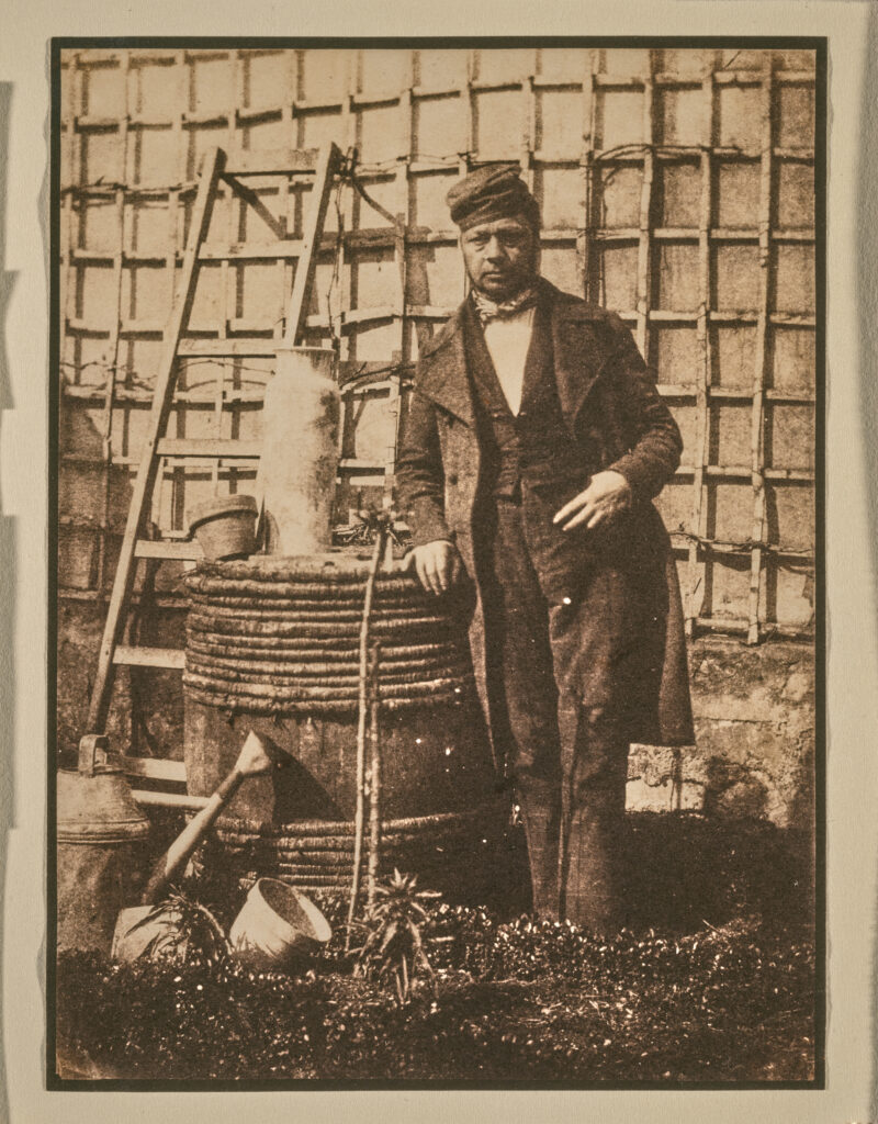 a black and white photograph, but in brown tones, of a man standing in front of a gridded trellis with gardening tools to his left. He leans on a rain barrel.