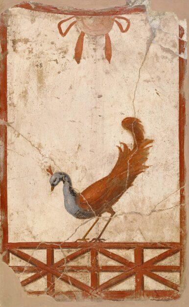 What Did Ancient Romans Eat?