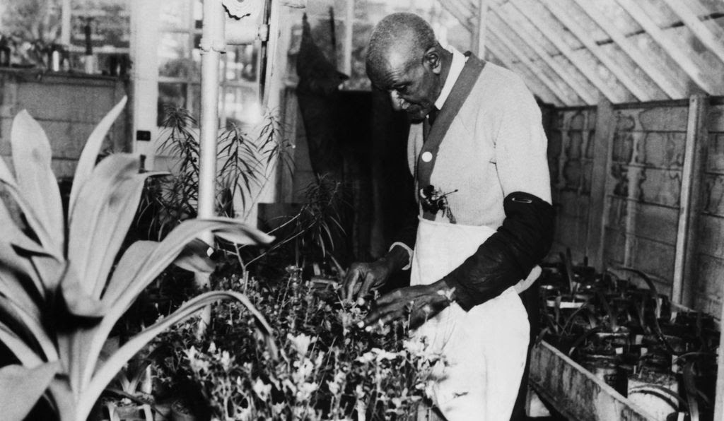 Man in a greenhouse tending to plants, surrounded by plants and scientific equipment