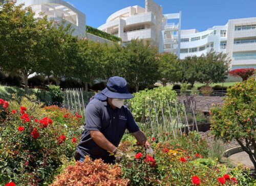 How Do We Care for the Grounds and Gardens?