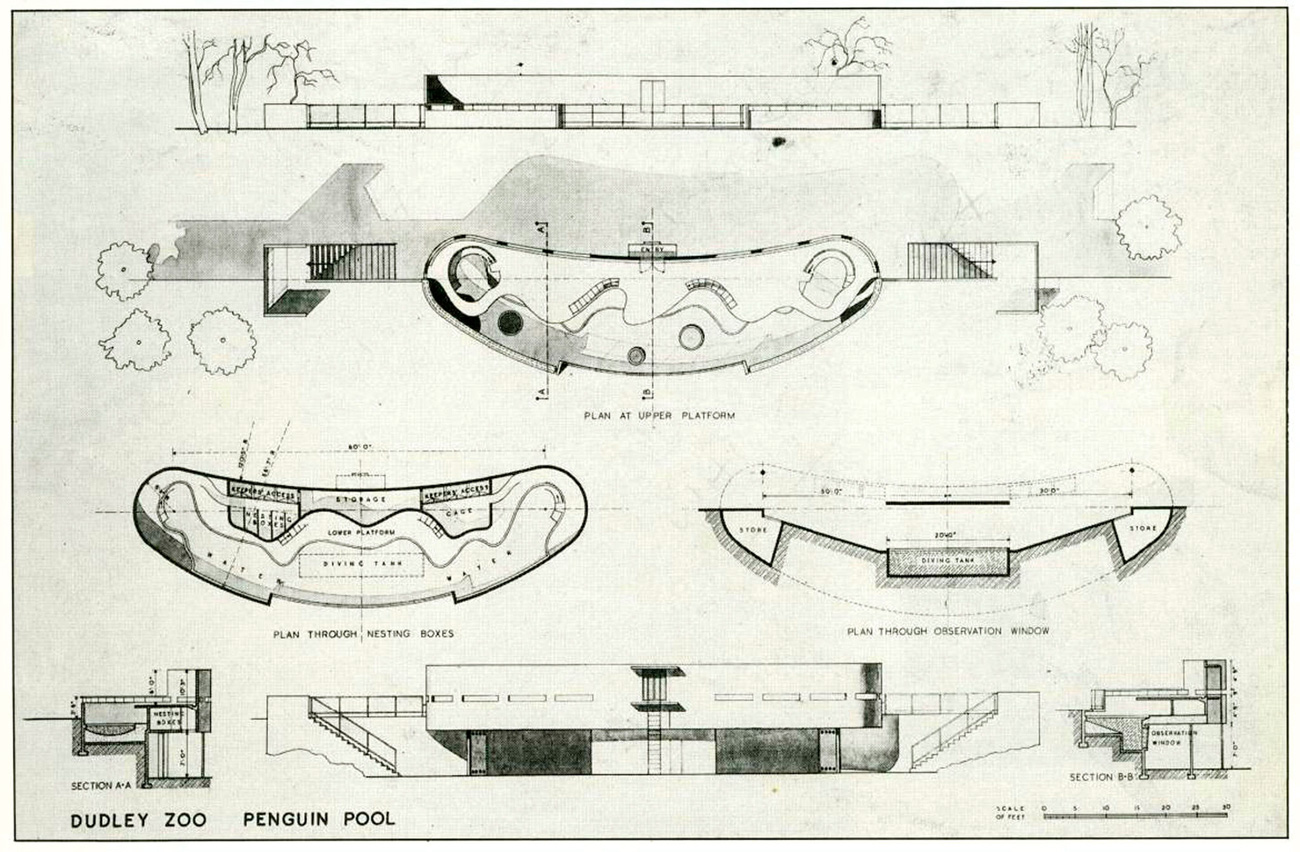 Blueprint for the penguin pool at the Dudley Zoo shows architectural drawings of the enclosure.